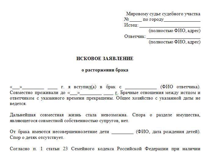 Исковое заявление в суд, образец